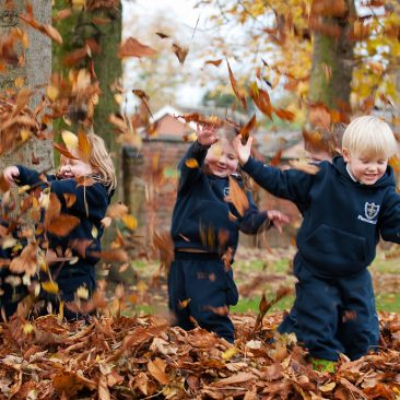 Autumn Leaves at Prestfelde School