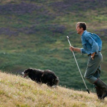 Welsh Hill Farmer
